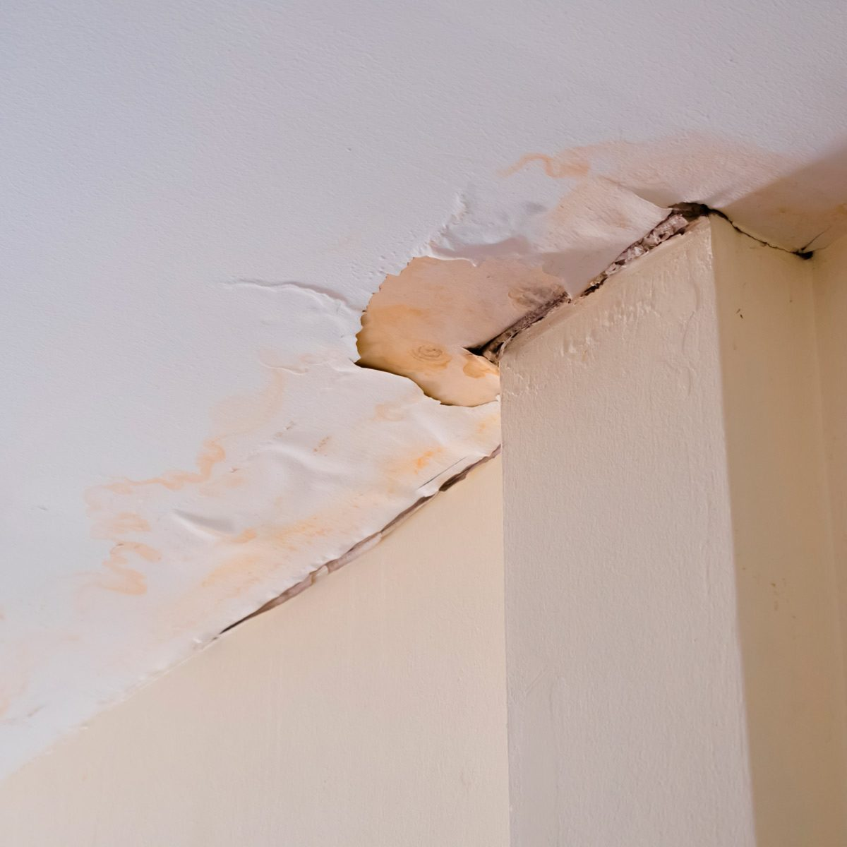 Ceiling Has Water Damage