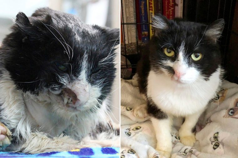 Magoo Before and After