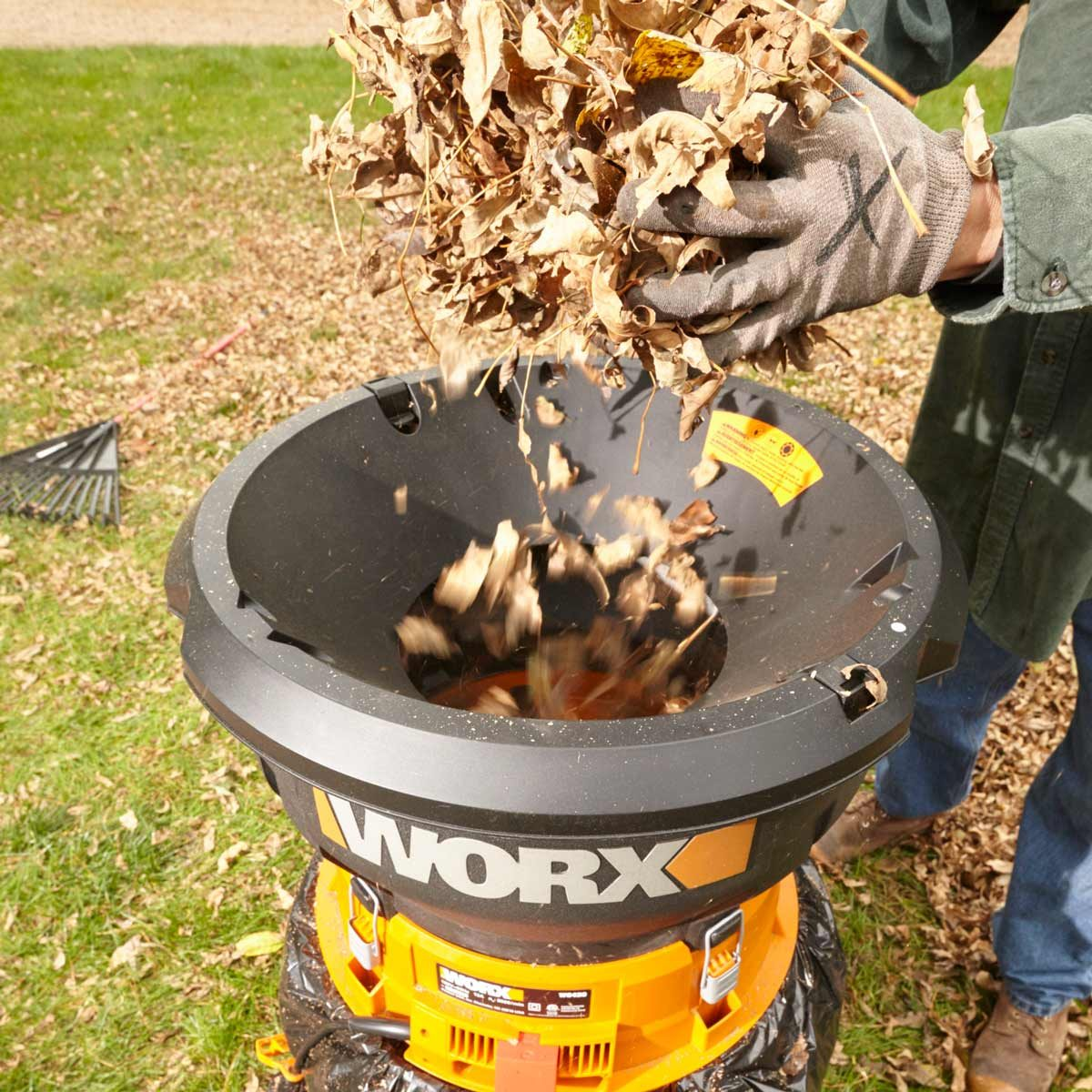 Man dumps leaves into an electric leaf mulcher