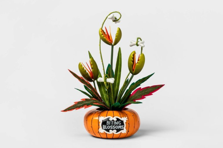 spooky target decor decorations halloween biting blossoms