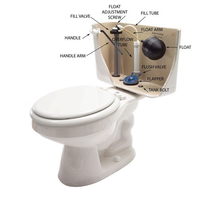 Toilet diagram