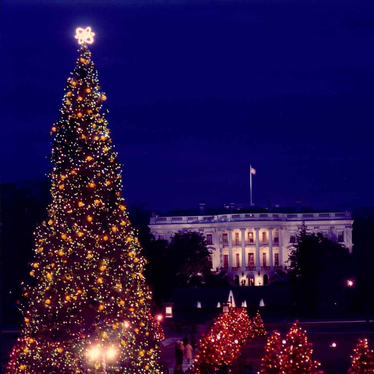 1972-Christmas_White_House_Tree