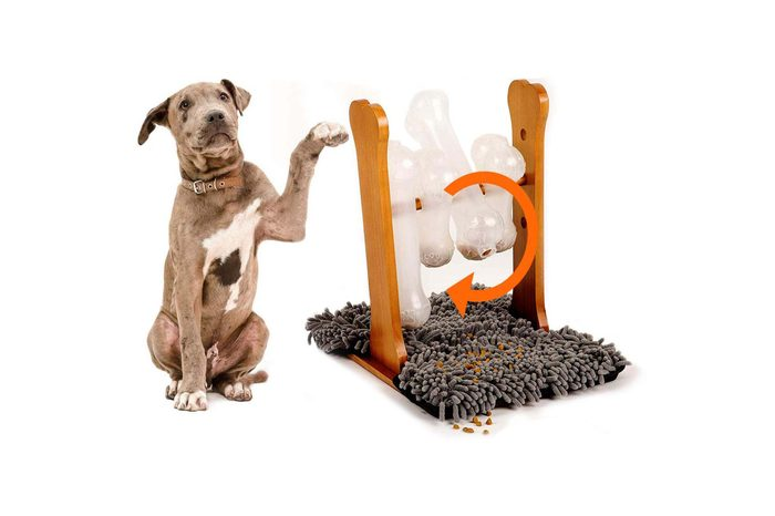 spinner dog toy