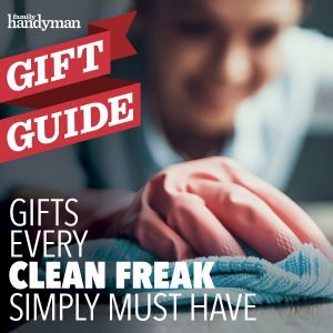 15 Gifts Every Clean Freak Simply Must Have