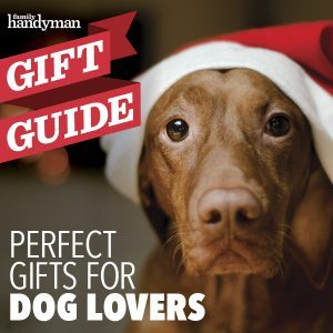 12 Perfect Gifts for Dog Lovers