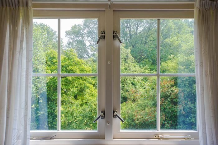 Beautiful cozy window with green forest view and white curtains. sunny day