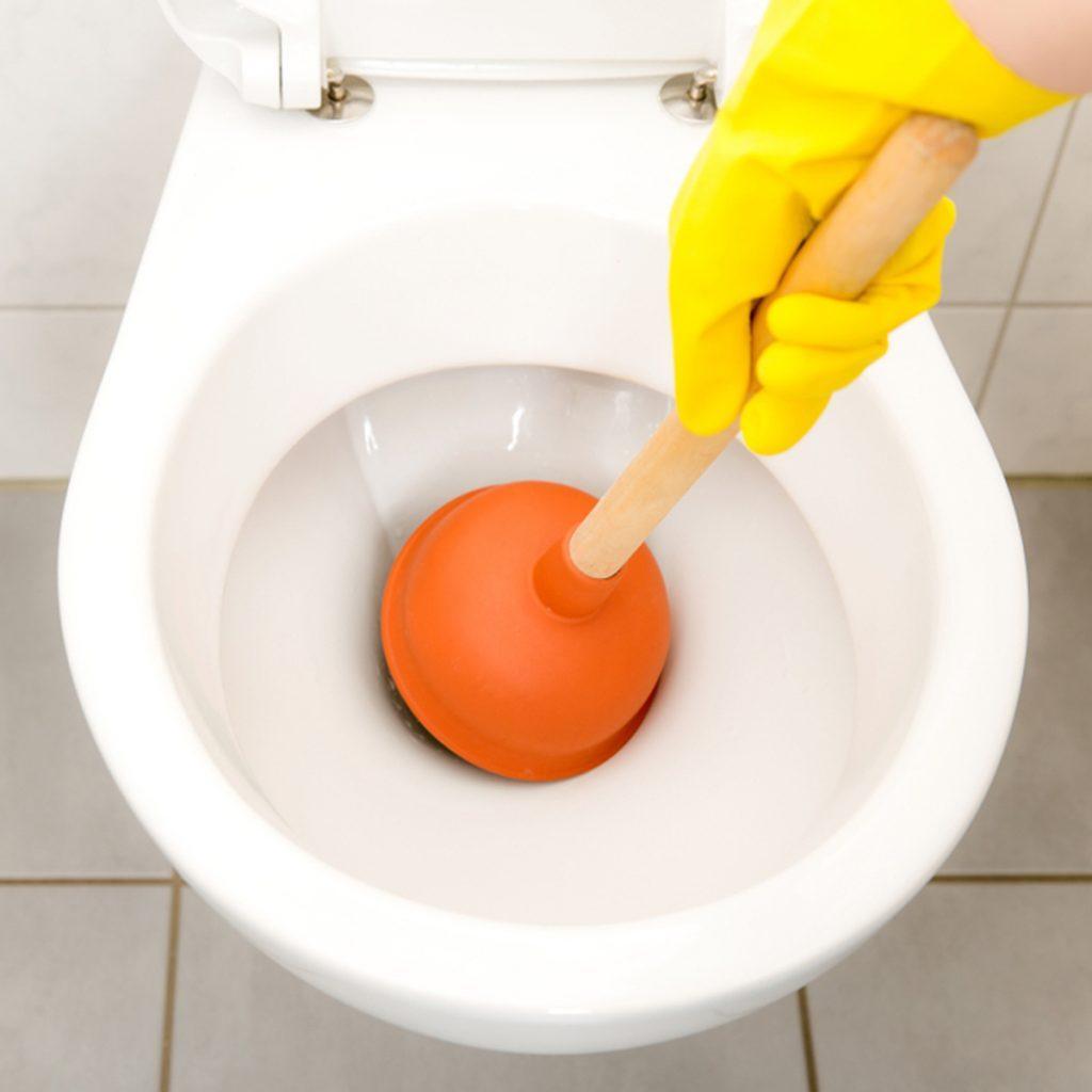 toilet plunger