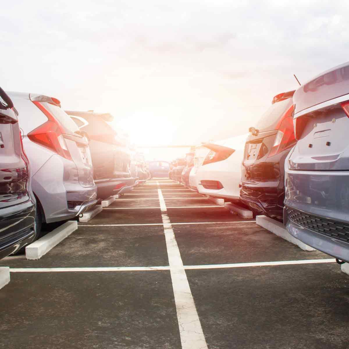 A-row-of-cars-on-a-dealer-lot