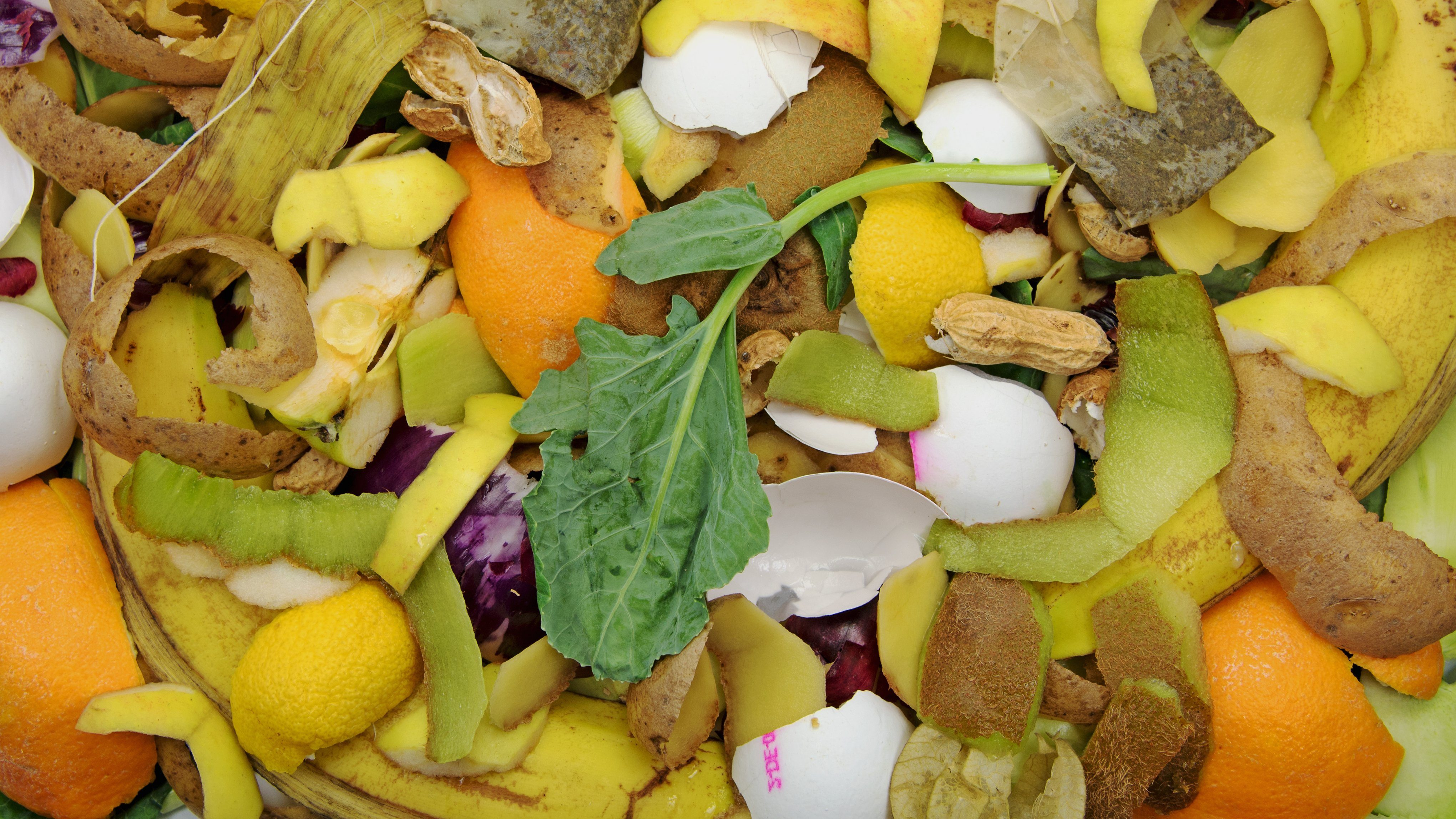 Biowaste for composting