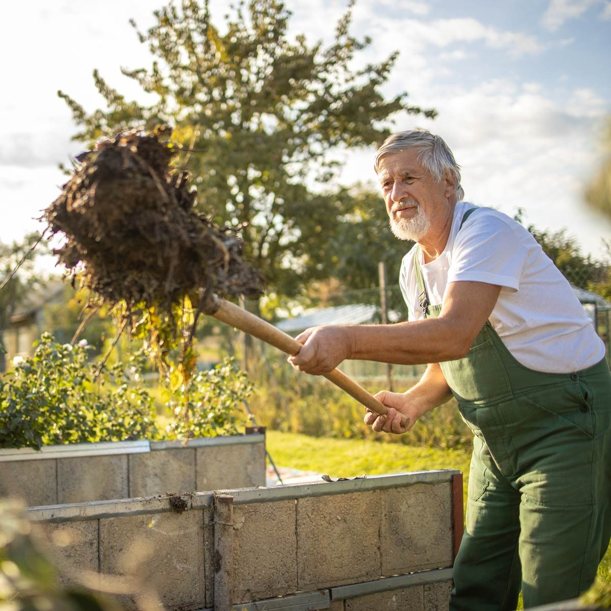 Regenerative Gardening composting garden trends