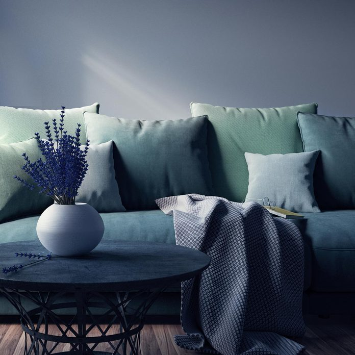 Modern interior design of living room couch pillows