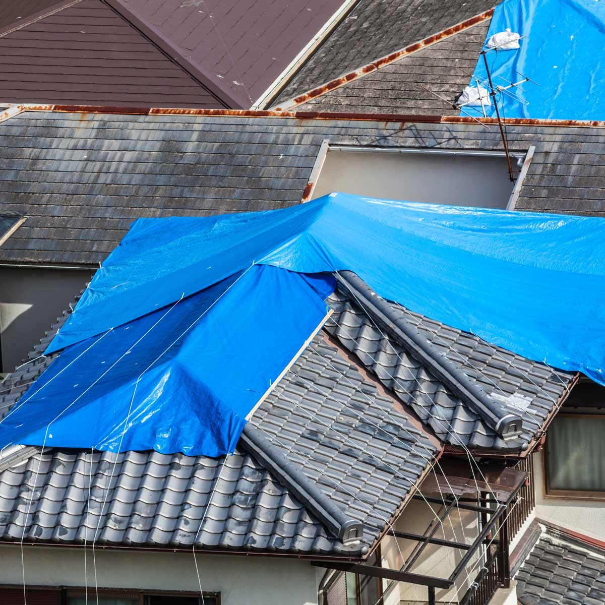 tarps on roofs