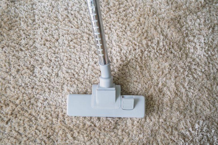 Modern vacuum cleaner vacuuming on carpet