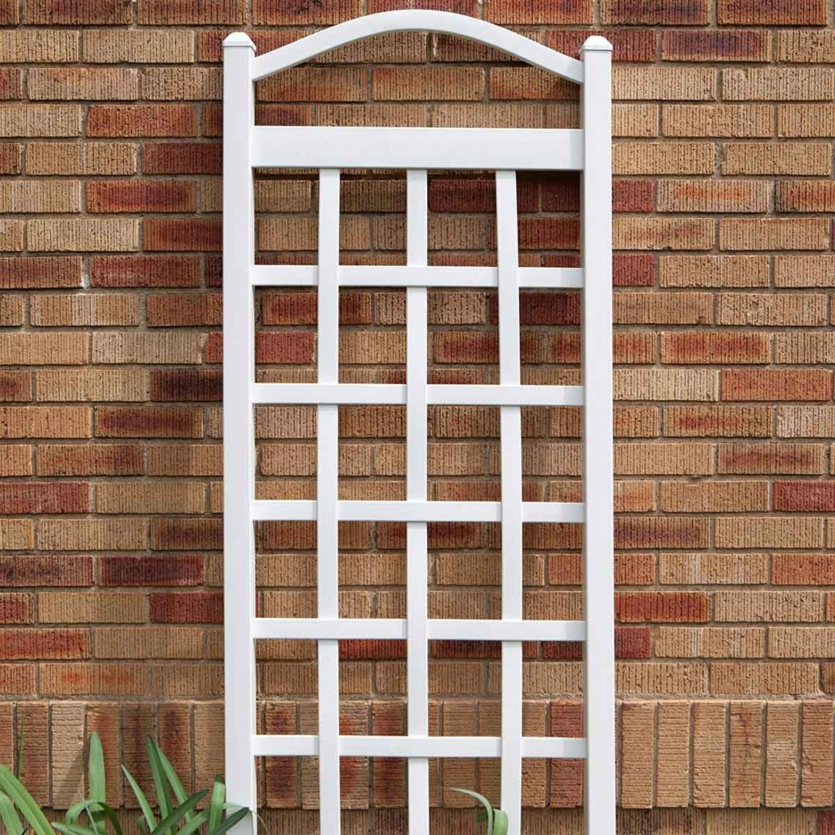 White trellis leaning against a wall