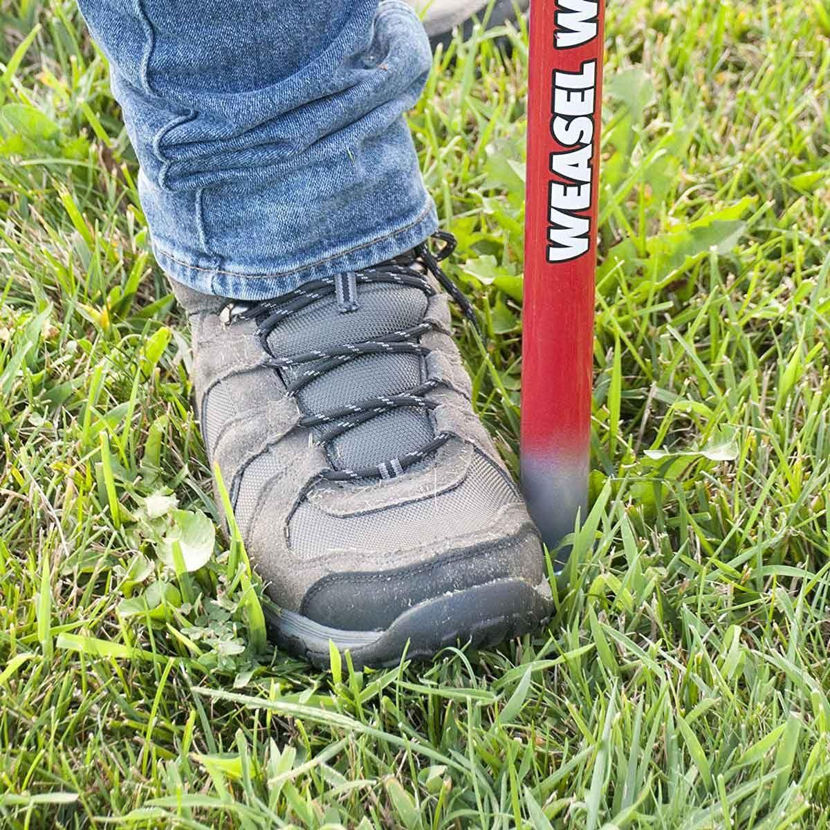 Standing lawn weeder
