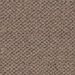 What to Know About Olefin Carpets