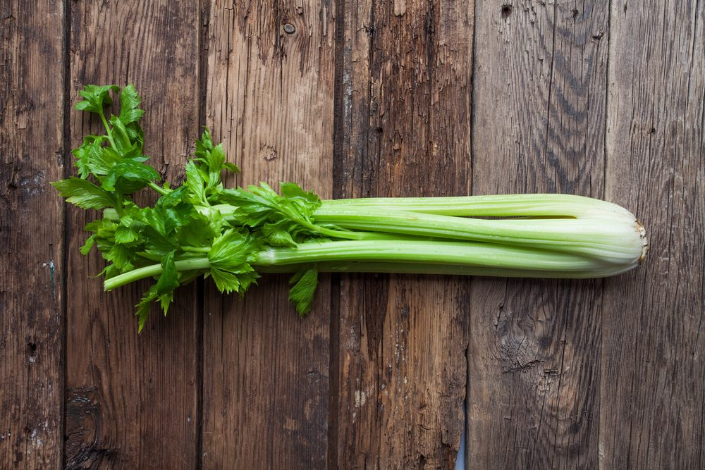 fresh celery on old rustic background