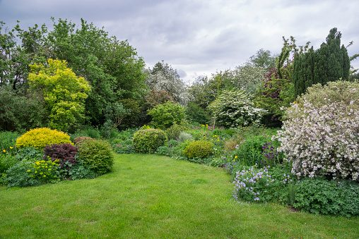 Abundant growth in a cottage garden in May