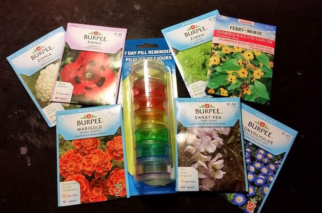 rainbow garden seed flower gift