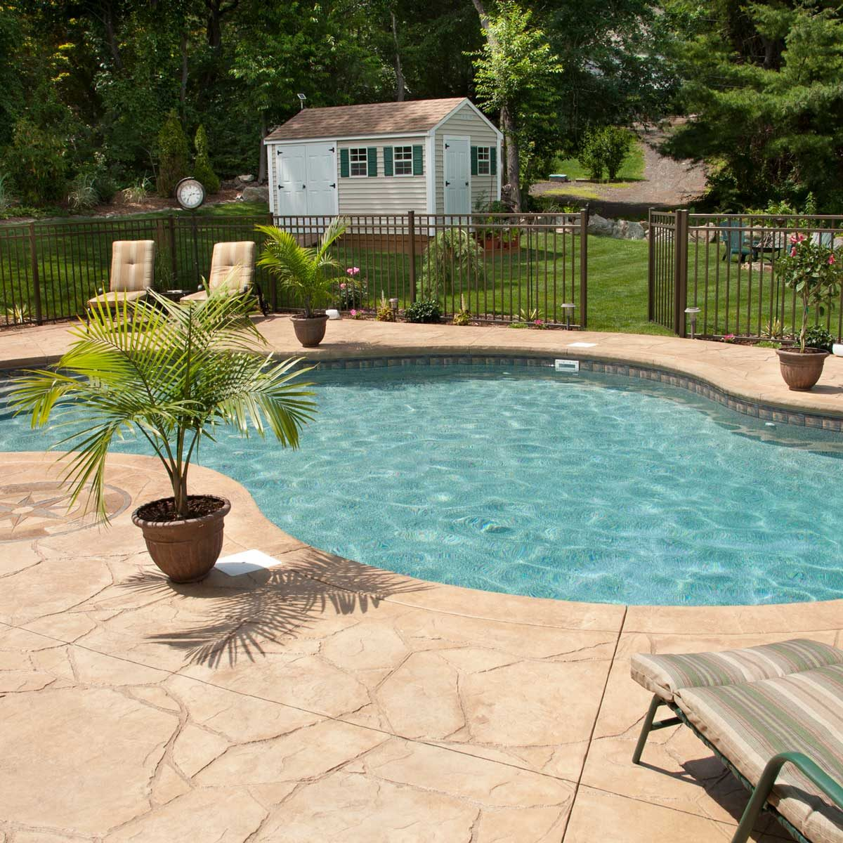 Backyard pool with fence