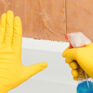 6 Household Mold Hot Spots and How to Clean Them