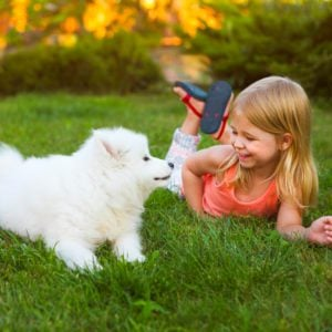 Safe Landscaping Tips for Families With Kids and Pets