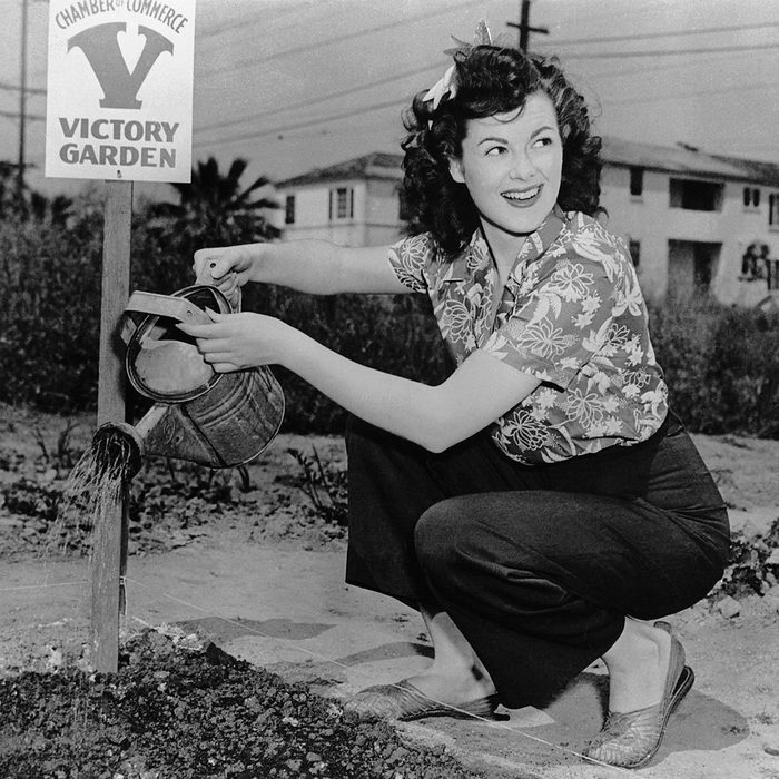 American actress Barbara Hale waters a communal garden established by the Chamber of Commerce, United states, 1945. (Photo by © Hulton-Deutsch Collection/CORBIS/Corbis via Getty Images)