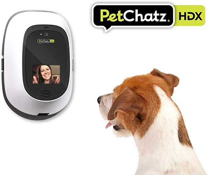 PetChatz pet camera