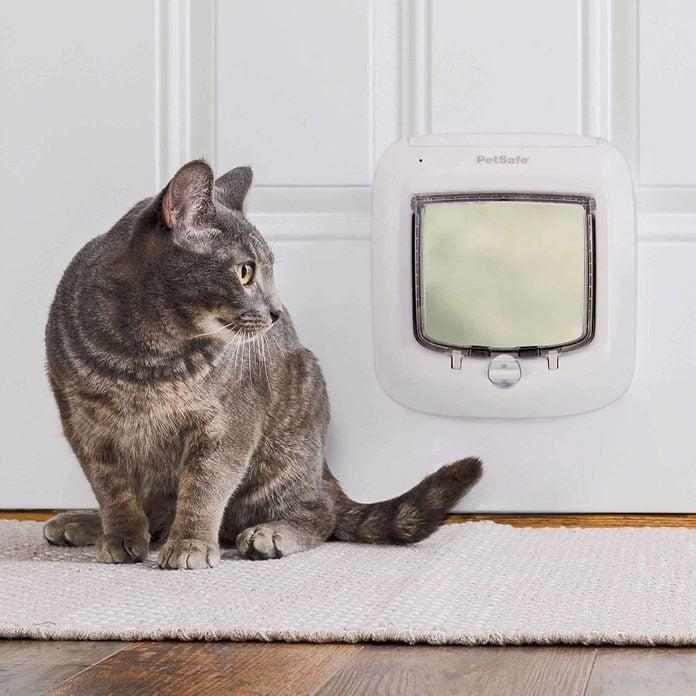 PetSafe Interior and Exterior Cat Door