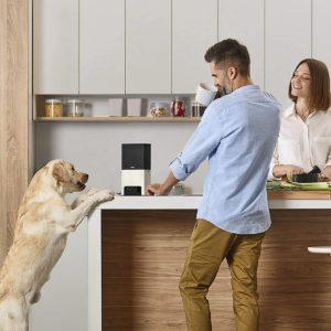 7 Best Smart Pet Monitors