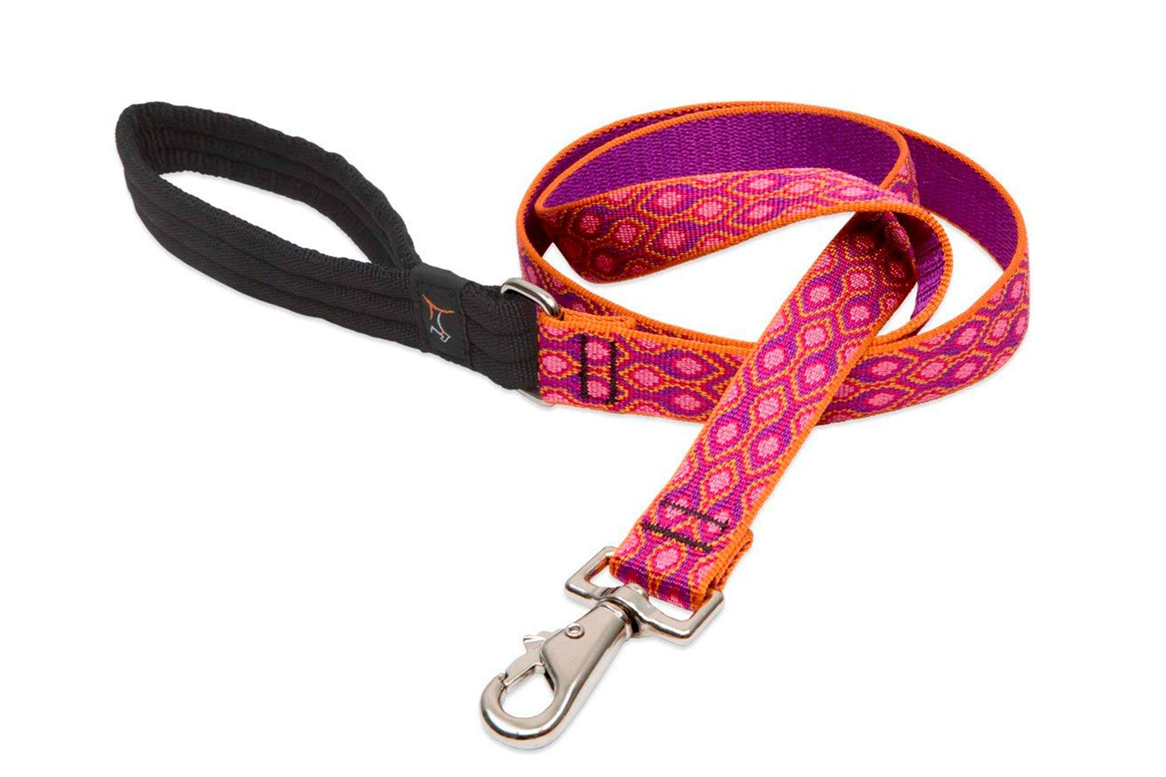 Dog Leash