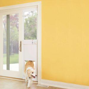 6 Best Smart Dog Doors