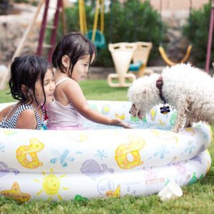 Best Kiddie Pools for 2020
