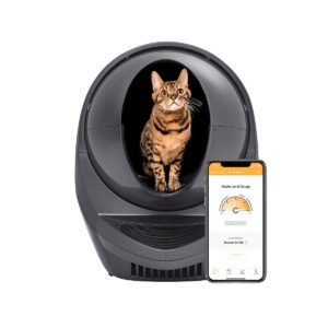 10 Best New Gadgets for Your Cat