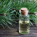10 Naturally Derived Tick Repellents That Actually Work