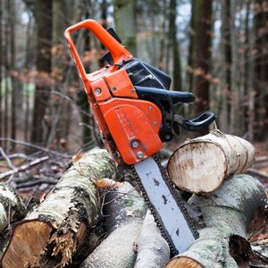 Chainsaw Buying Guide for 2020