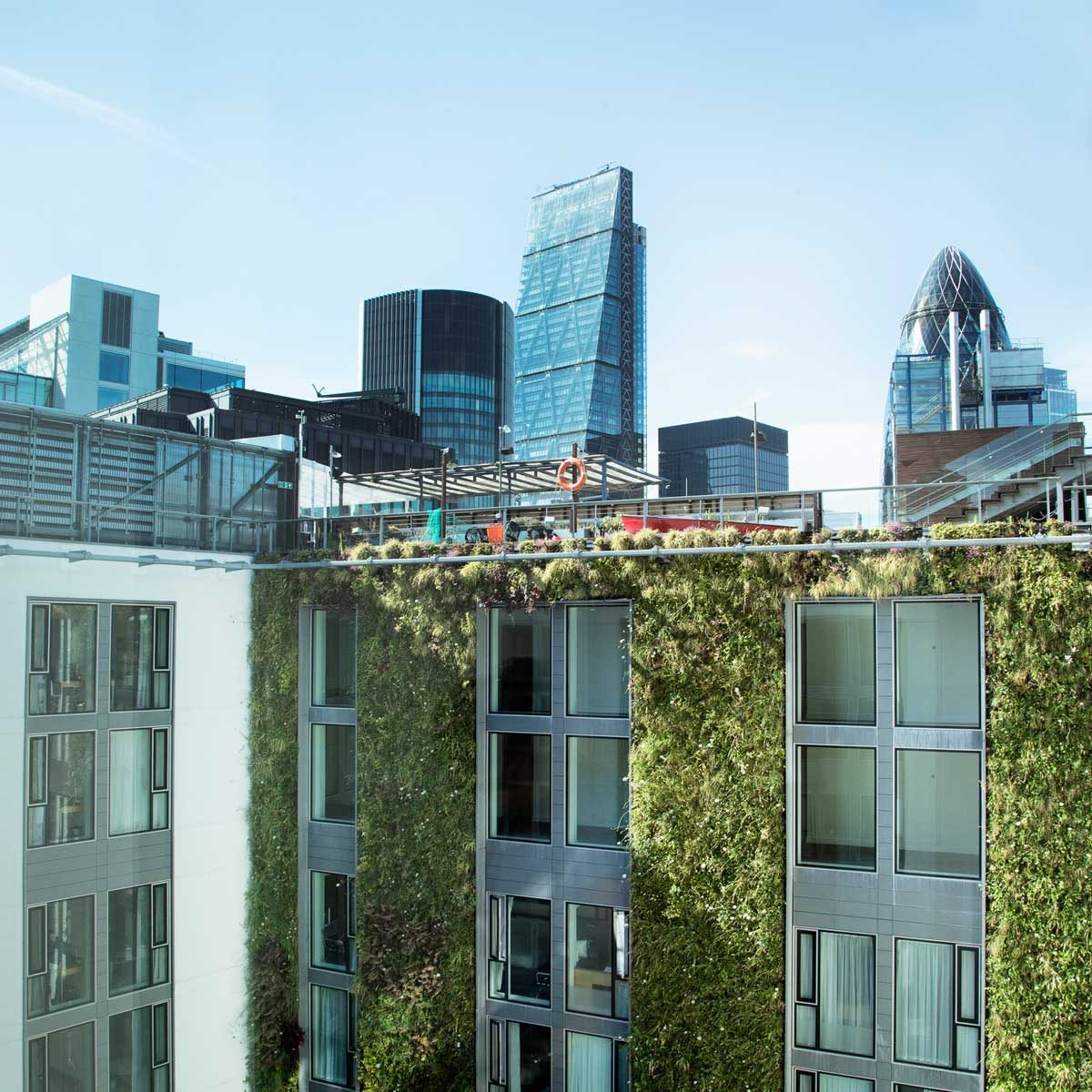 Sustainable building with living wall