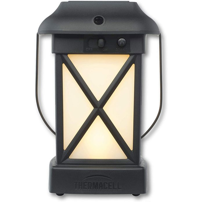 Bug lantern