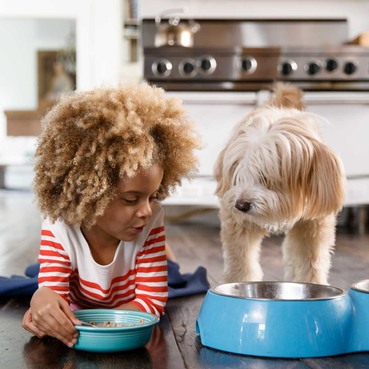Little girl eating with a dog