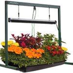 Get These Gardening Gems During Amazon's Summer Sale!