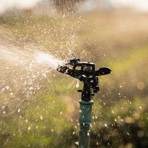 6 Best Smart Sprinkler Controllers