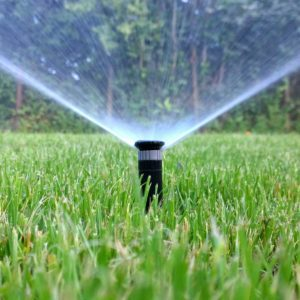 What to Know About Smart Sprinklers