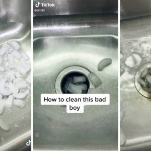 This TikTok Ice Cube Trick Will Take Care of Your Stinky Garbage Disposal
