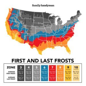 How to Find the First and Last Frost Dates