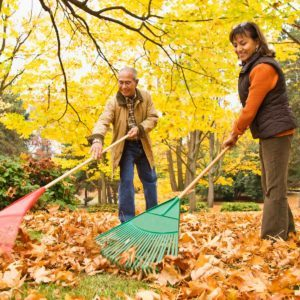 5-Minute Garden Chores for Fall