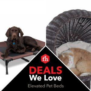 Deals We Love: Elevated Pet Beds