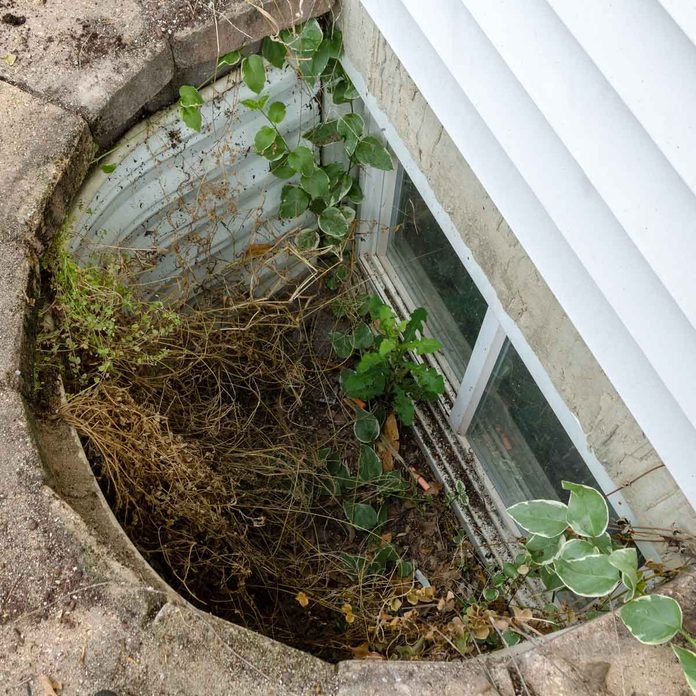 Window well without a cover, full of debris