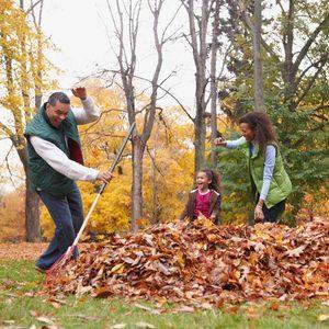 10 Best Leaf Rakes for 2020