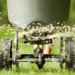Should You Use Winter Fertilizer?