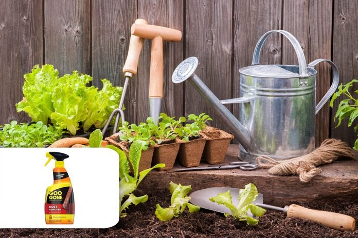 gardening tools fall cleaning